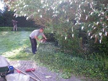 Entretien de jardin sambreville yves couvreur namur for Nettoyage de jardin